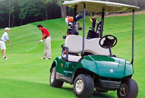 129,golfette